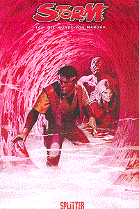 Storm, Band 14, Splitter Comics