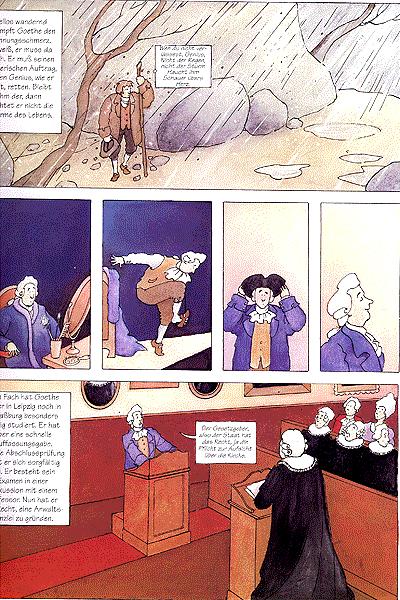 Goethe, Einzelband - Zum sehen geboren - Zum schauen bestellt